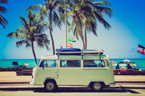 Volkswagen transporter palmy